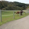 Piquets de clôtures